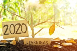 A tree branch with a single remaining last leaf hanging beside a 2020 Learning sign at sunset. Life lessons and learnings from the year 2020 concept.