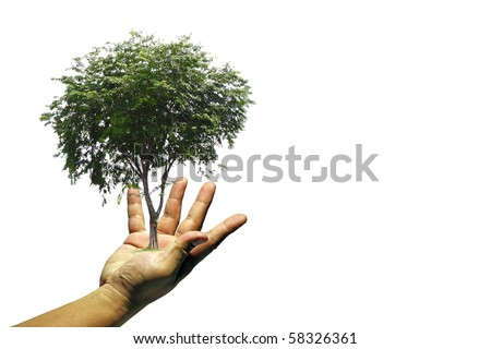 A tree growing from a hand with an open palm symbolizing gift of nature.