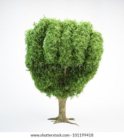 A tree shaped like a human fist - stock photo
