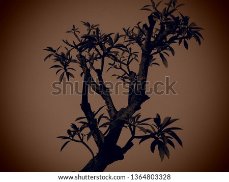A tree  silhoutte in brown background #1364803328
