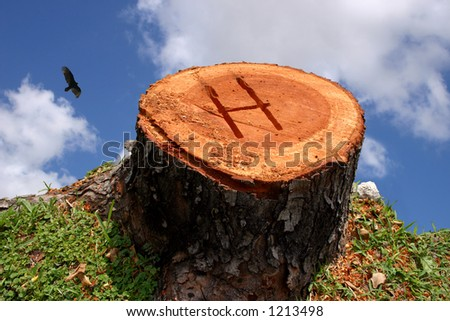 A tree stump on the edge of a cliff. Letter H carved in.