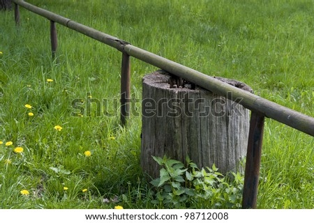 A tree stump under a fence post in a prairie. #98712008