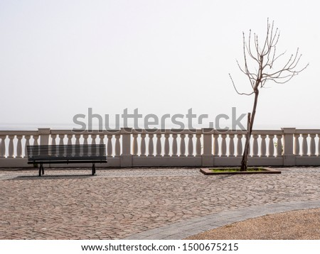 A tree without leaves and a bench, a concept of solitude and silence #1500675215