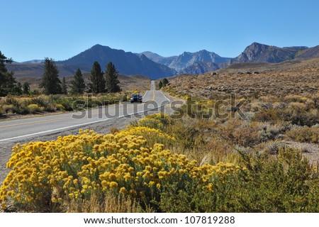 A trip through the colorful autumn desert to the distant mountains