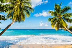 A tropical beach in the south of Martinique island