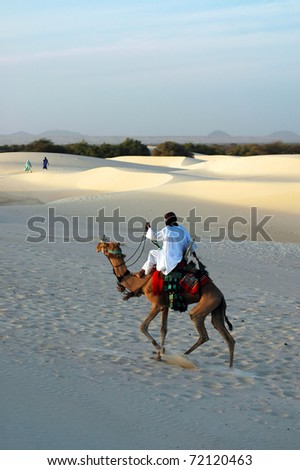 ... riding his camel in the Sahara desert with two women in the background