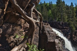 A twisted tree trunk next to jagged rocks and a waterfall at Gooseberry State Park in Minnesota.