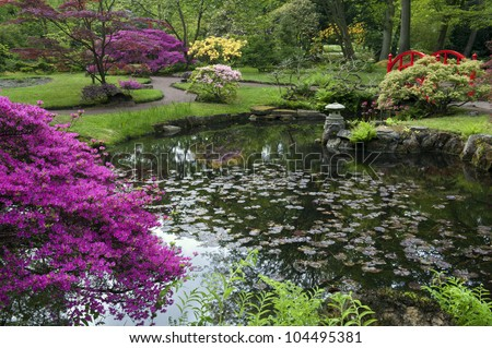 a typical, Colorful  japanese garden in spring