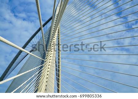 A Unique Architecture Bridge in Putrajaya, Malaysia  #699805336