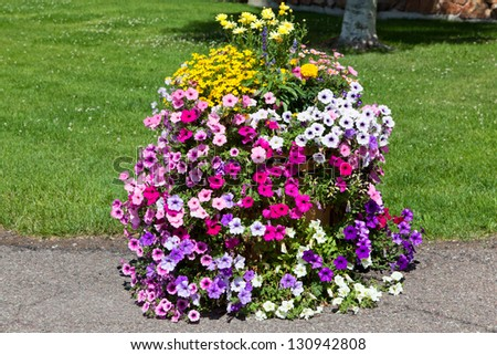 A variety of colorful summer flowers cascade out of a wooden tub set on a sidewalk for landscaping decoration.