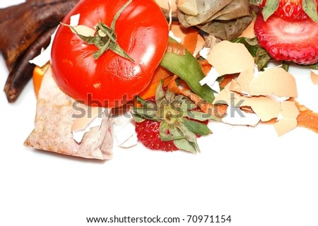 A Variety of Organic Fruit and Vegetable Scraps in a Compost Pile On White, with Room for Text Below
