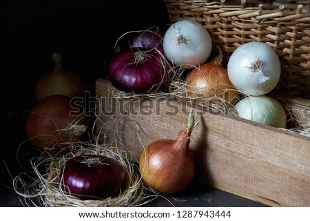 A variety of varieties of onion.