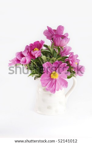 A vase of fresh cut pink Peonies in a vase, isolated on a vertical white background, great for Mother's Day or Easter