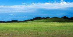 A vast grassland pasture with grassland hills under a clear sky