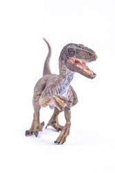 A Velociraptor dinosaur toy stands against white background