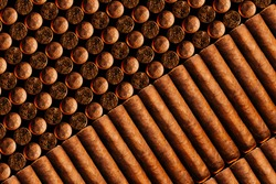 A vertical look of fresh hand-cooked new cigars.concept of a businessman's rich leisure.