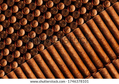 A vertical look of fresh hand-cooked new cigars.concept of a businessman's rich leisure. ストックフォト ©