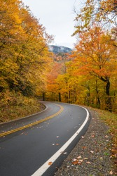 A vertical photograph of a two-lane road winding through the smoky mountains of North Carolina with fall colors of orange and red, green, yellow and brown on both sides of the road
