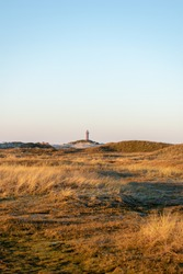 A vertical shot of a coastal dry field with a lighthouse in background in Norderney