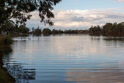 A very calm river murray with ripples and reflections located in the river land at Berri South Australia on 20th June 2020
