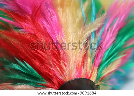 A very close up look at a cat's toy made of feathers. You can see the individual barbs in the feathers. Could also be taken as a very colorful feather duster.