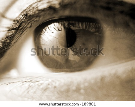 a very sharp macro of an eye