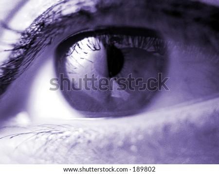a very sharp macro of an eye