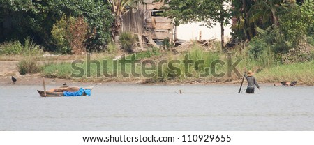 A vietnamese fisherman is searching for snakes and shells in the water in Hoi An (Vietnam)