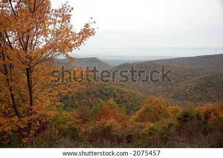 A view across the mountain tops in autumn along the Skyline Drive in Virginia.
