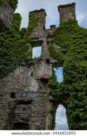 A view from inside this spectacular and magical ivy clad castle that has been left abandoned and left to the forces of nature #1416455693