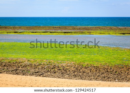 A view from the Atlantic ocean during the low tide