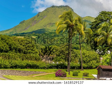 A view looking up to the volcano, Mount Pelee in Martinique Foto stock ©