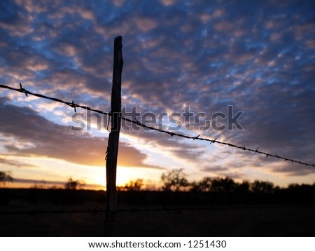 A view of a barbed wire fence during a Texas Sunset.