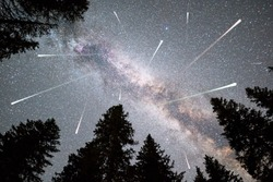 A view of a Meteor Shower and the Milky Way with a pine trees forest silhouette in the foreground. Night sky nature summer landscape. Perseid Meteor Shower observation.