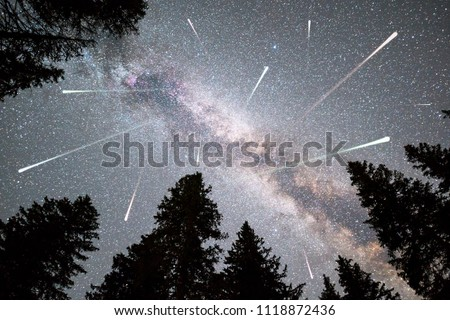 A view of a Meteor Shower and the Milky Way with a pine trees forest silhouette in the foreground. Night sky nature summer landscape. Perseid Meteor Shower observation. #1118872436