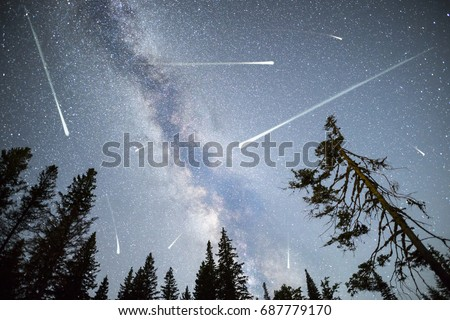 A view of a Meteor Shower and the Milky Way with a pine trees forest silhouette in the foreground. Night sky nature summer landscape. Perseid Meteor Shower observation. #687779170