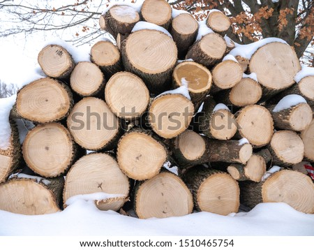 A view of a pile of round logs of stacked firewood for burning fireplace fuel piled in fresh white snow in Wisconsin in winter.