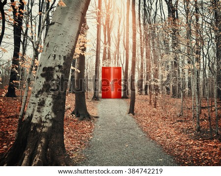 A view of a rocky path trail in the fall forest with bare trees of a glowing red door for a freedom, risk or decision conceptual concept.