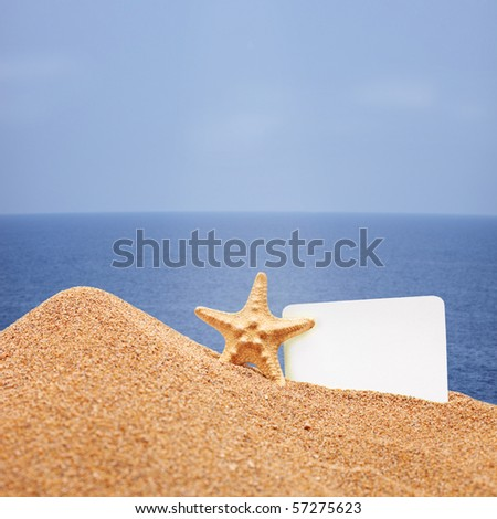 A view of a sea star and a white card on a beach
