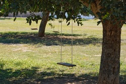 A view of a wooden swing in the shade hanging from a tree branch in Ibiza, Spain