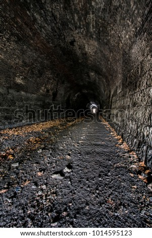 Abandoned Railroad Tunnel Images and Stock Photos - Page: 6 - Avopix com