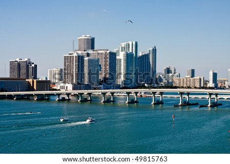 A view of Biscayne Bay in Miami Florida with a Seagull in the Sky