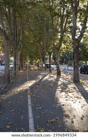 A view of corso Borsalino in the city of Alessandria, Piedmont (Italy) Stock photo ©