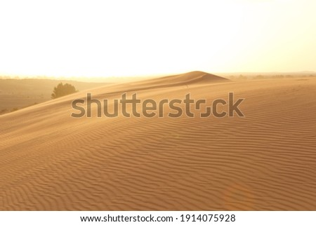 A view of desert dunes at sunset. Beautiful sand dunes in the Sahara desert at Morocco