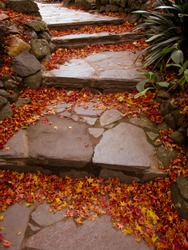 A view of garden stone steps covered by autumn leaves. The steps are made of wide stone tiles. Staircases can be used to symbolize achievements, a link of heavens and earth or spiritual enlightenment