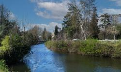 a view of Gave de Pau, france