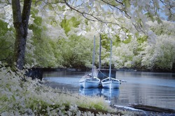 A view of infrared photography with two boats by the lakeside surrounded by trees with green and white color foliage.