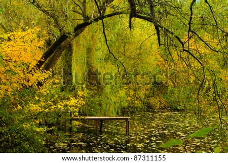 A view of lake bathed in golden light with a weeping willow tree in sharp focus in the foreground