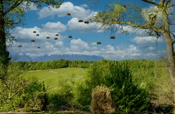 a view of military paratroopers in the air