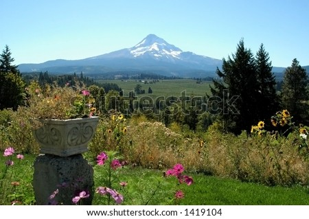 A view of Mt. Hood from an organic farm in the Columbia River gorge